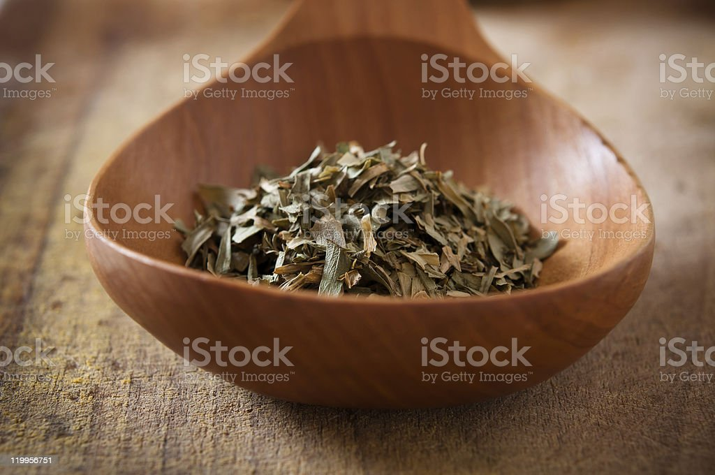 Tarragon in a wooden spoon royalty-free stock photo