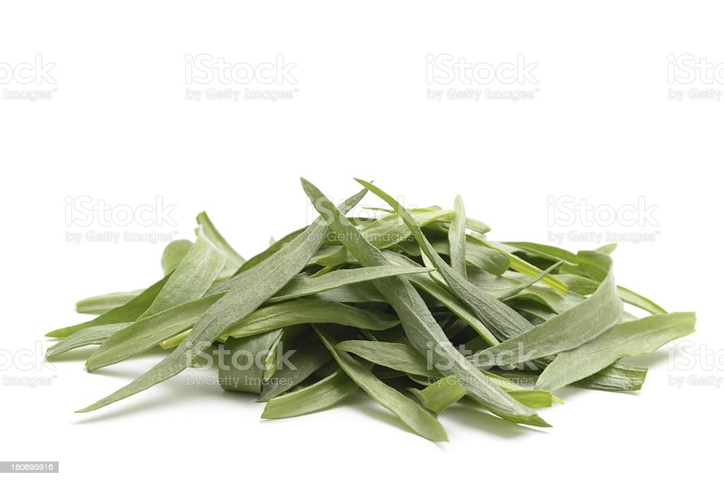 Tarragon leaves royalty-free stock photo