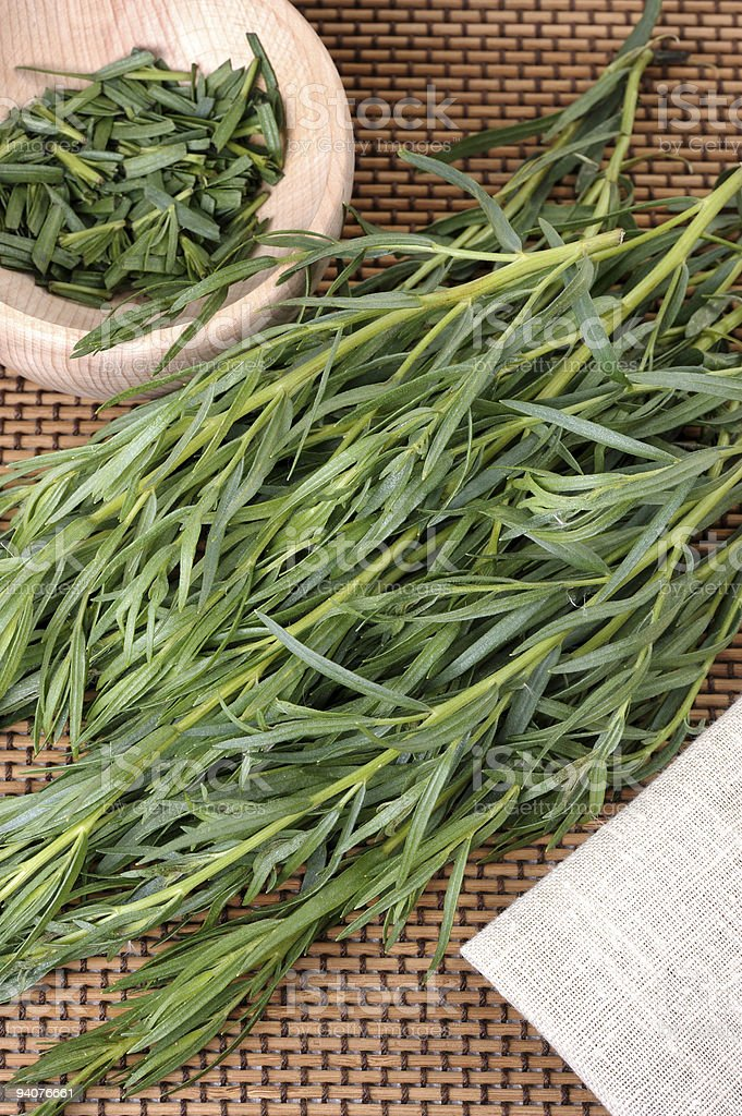 Tarragon (Artemisa dracunculus) stock photo