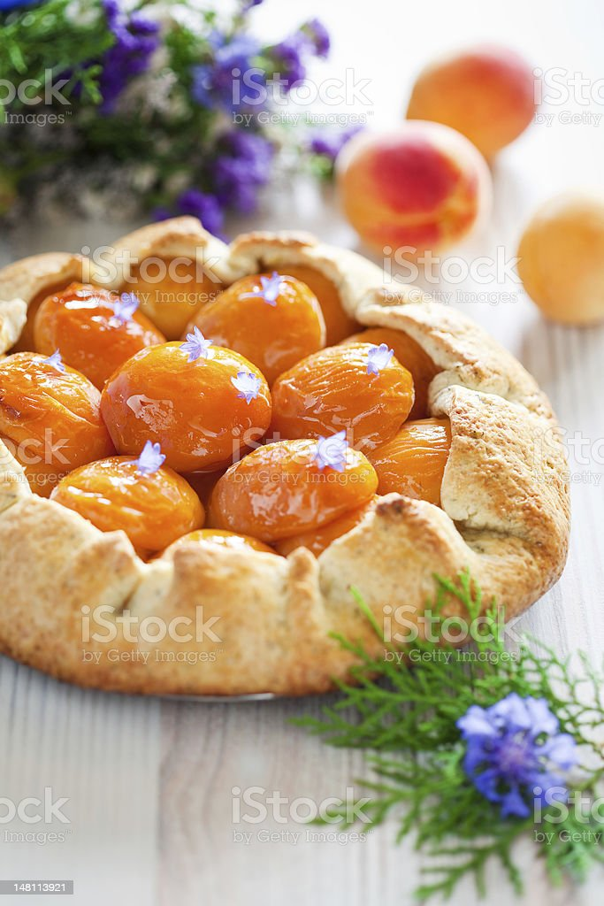 Tart with apricots royalty-free stock photo