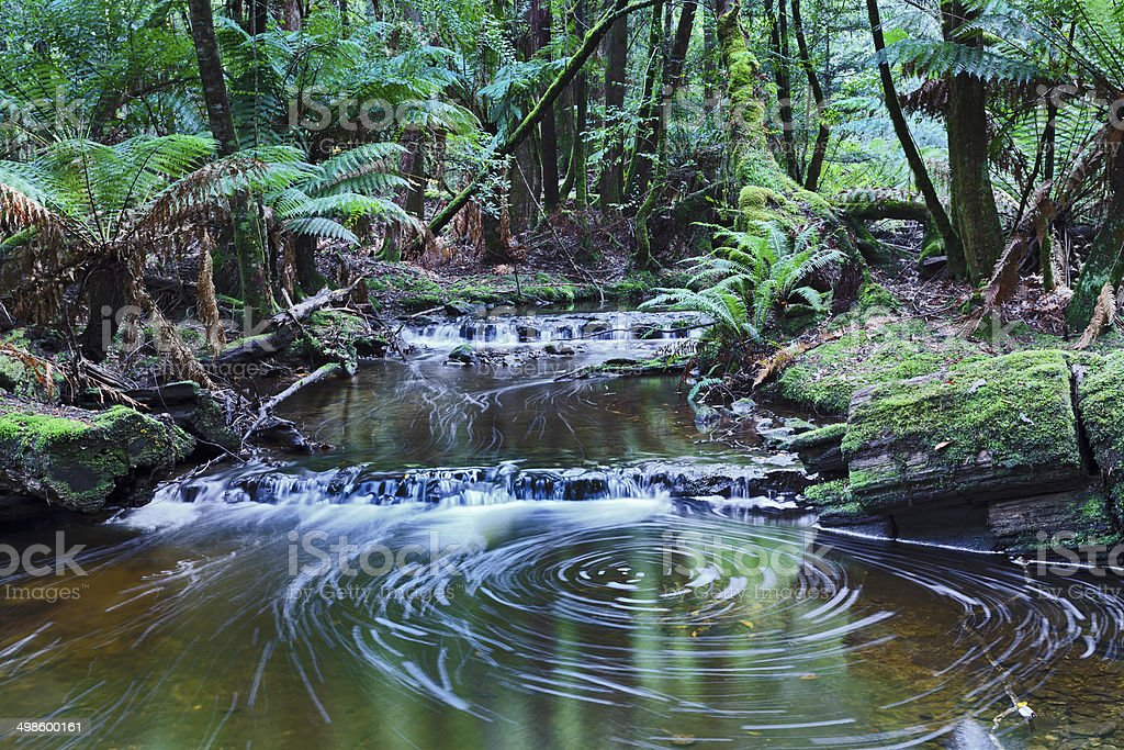 Tas Mt Field Stream Whirlpool stock photo