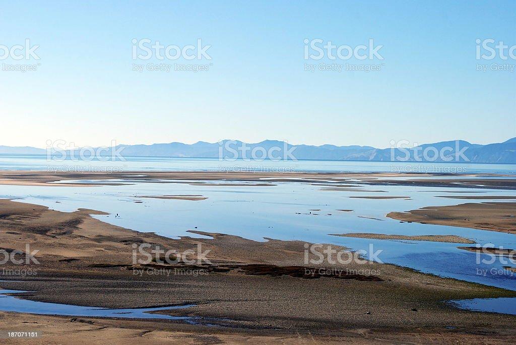 Tasman Seascape, Riwaka, New Zealand royalty-free stock photo