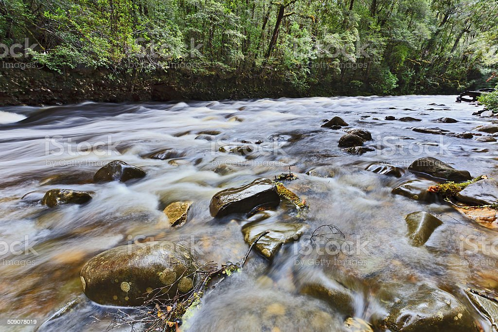 Tasmania franklin 02 river stock photo