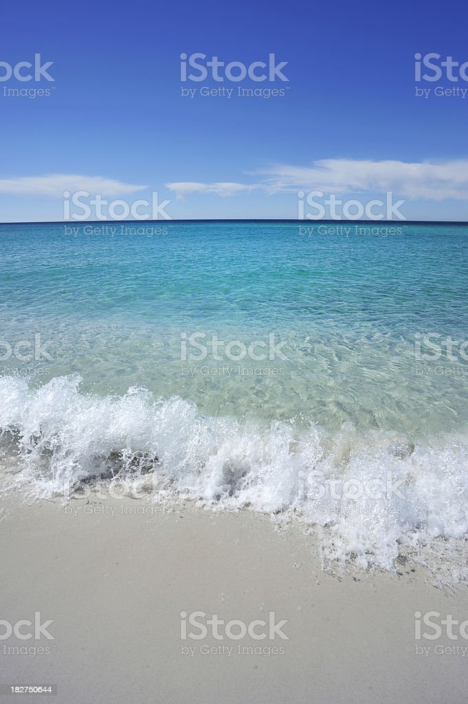 Tasmanian Beach royalty-free stock photo