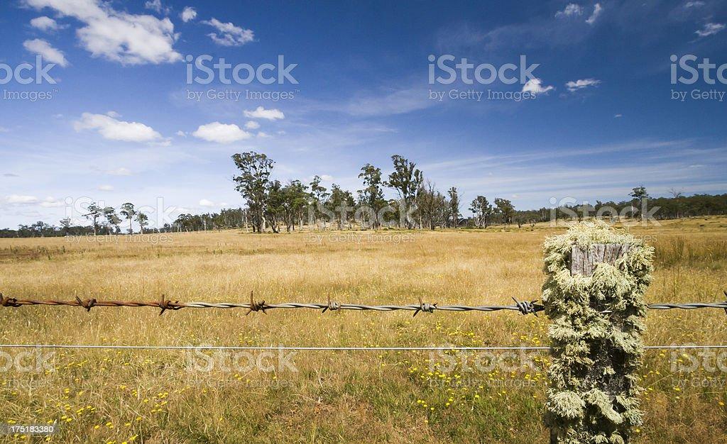 Tasmanian Countryside royalty-free stock photo