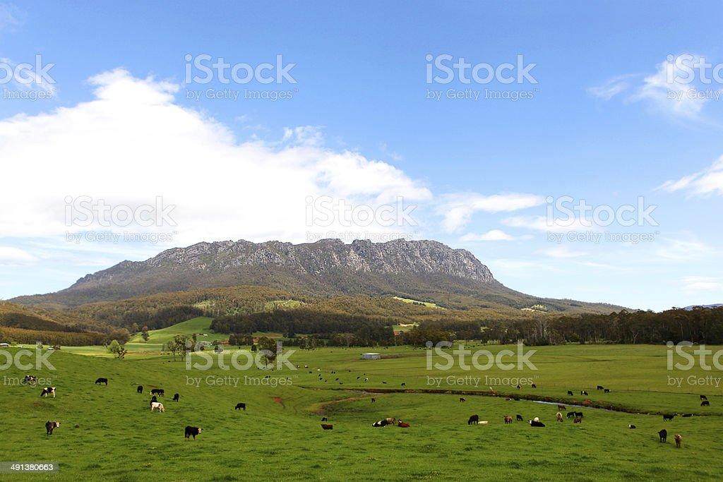 Tasmanian Landscape stock photo