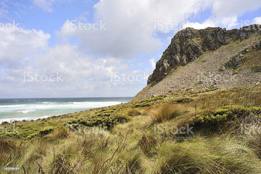 Tasmanian West Coast royalty-free stock photo