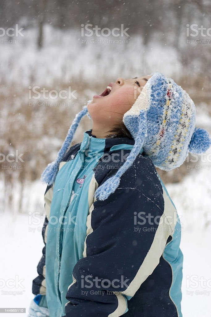 Taste of the snow royalty-free stock photo