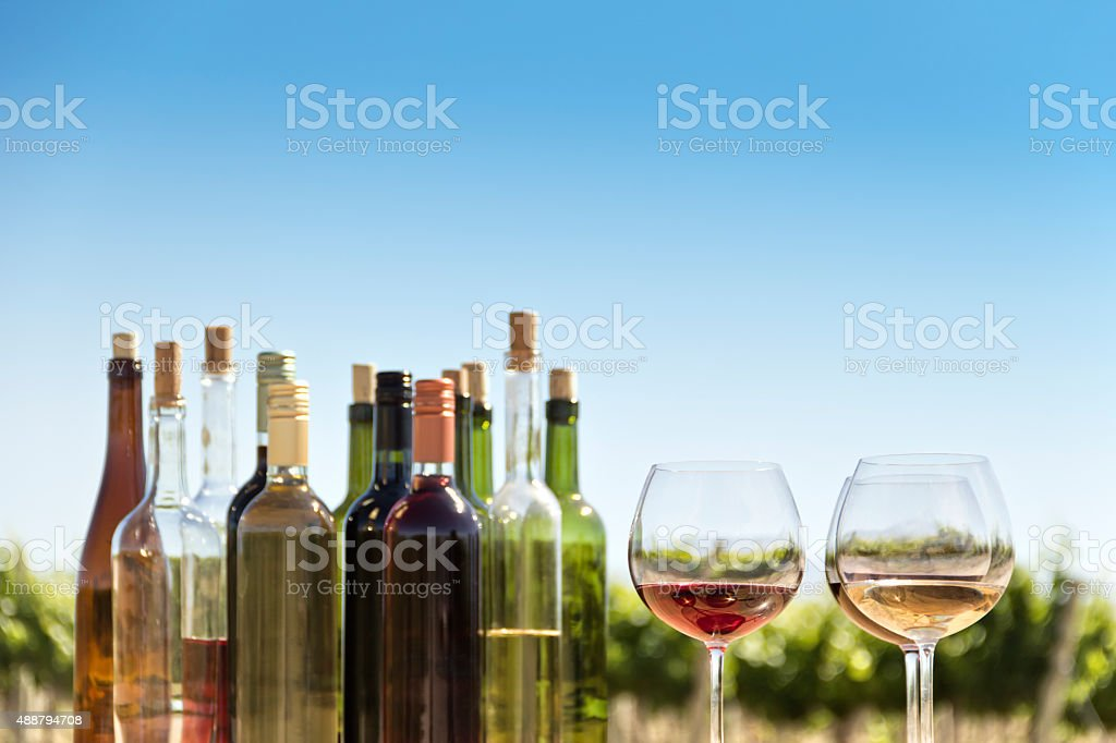Tasting of wines stock photo