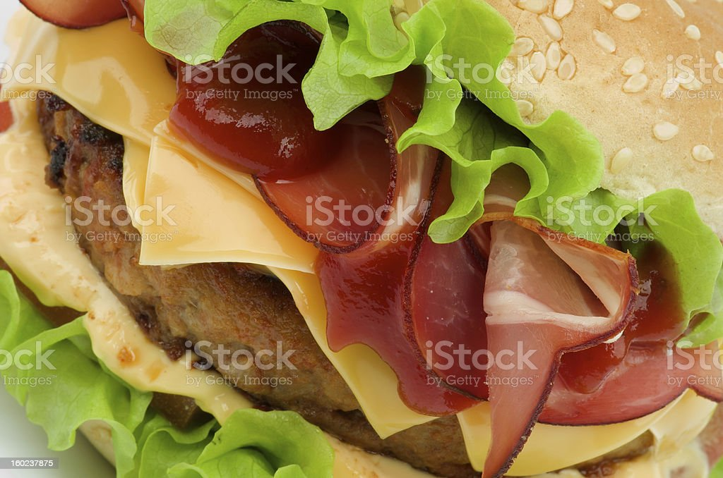 Tasty Hamburger royalty-free stock photo