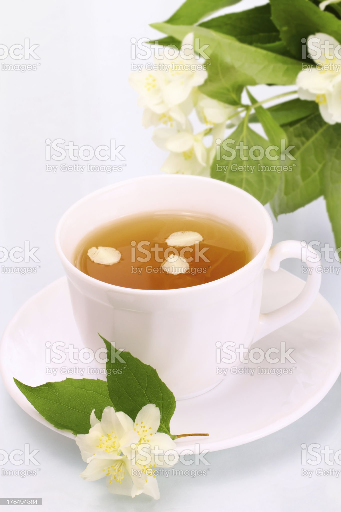 Tasty jasmine tea and beautiful flowers royalty-free stock photo