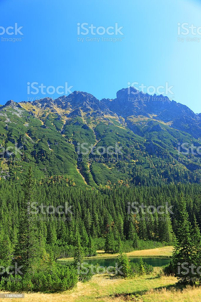 Tatra Mountains Landscape royalty-free stock photo