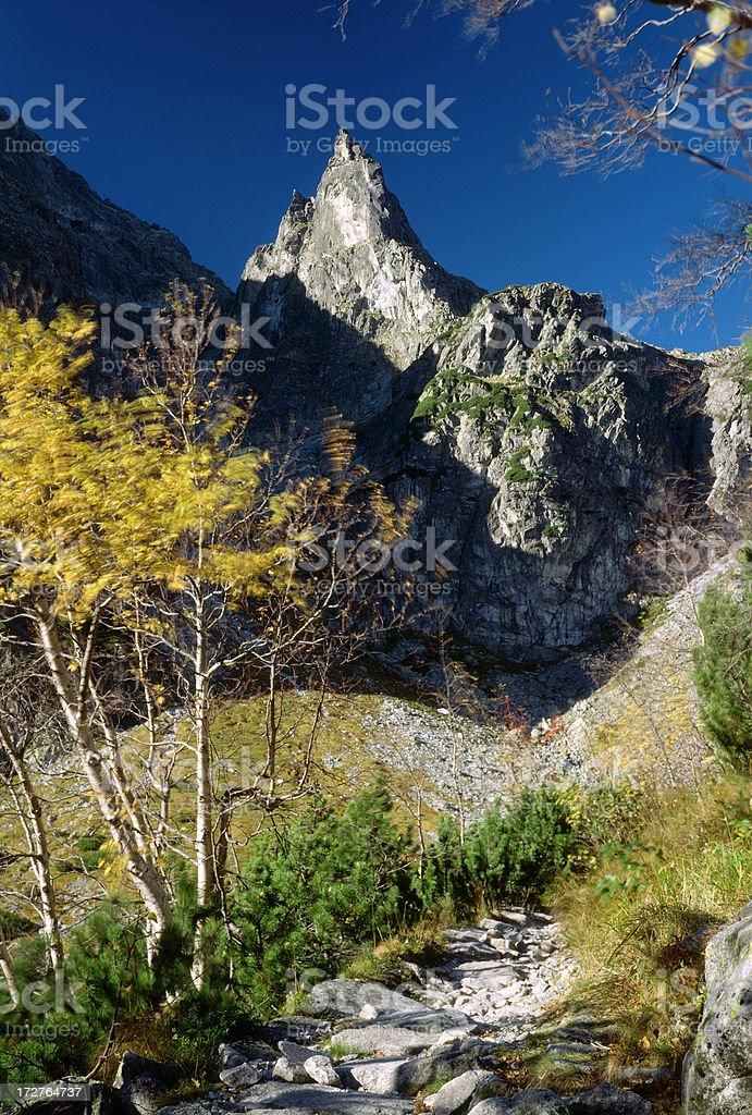 Tatra Park royalty-free stock photo