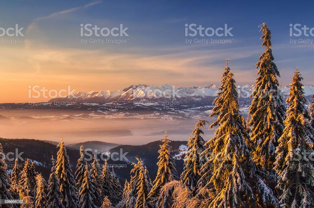 Tatras from Turbacz stock photo
