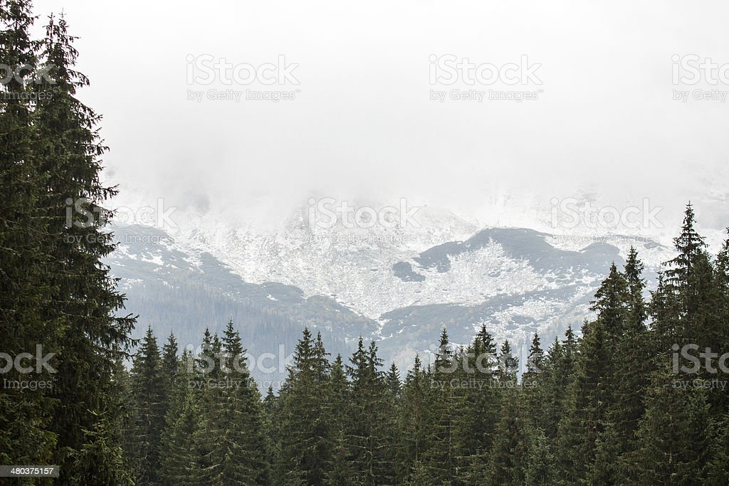 Tatras Mountains covered with snow in winter - Poland stock photo