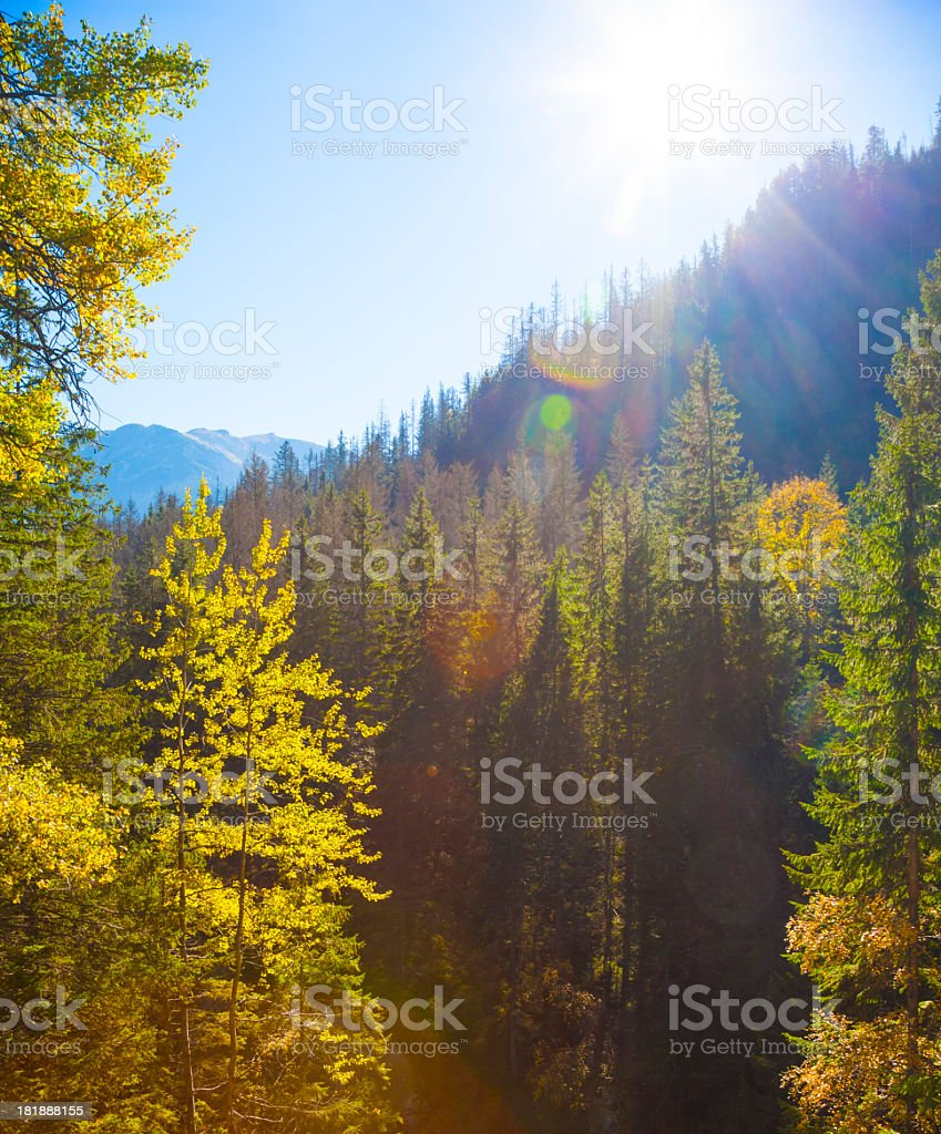 Tatras royalty-free stock photo