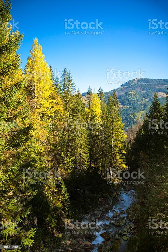 Tatras stock photo