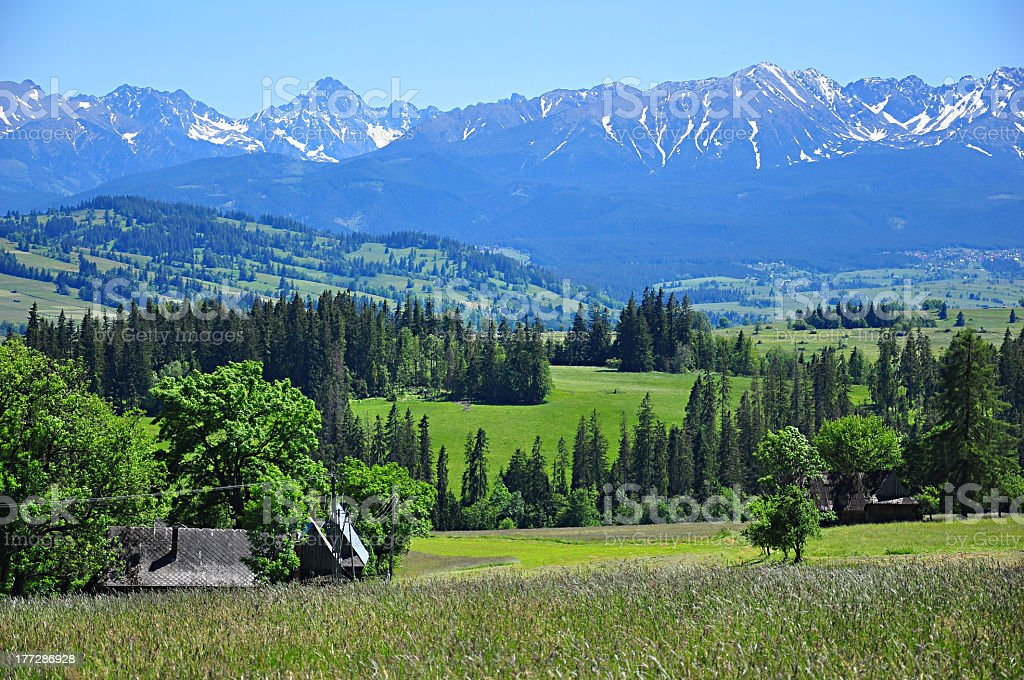 Tatra-spring landscape stock photo