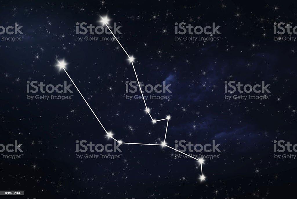taurus horoscope star sign stock photo