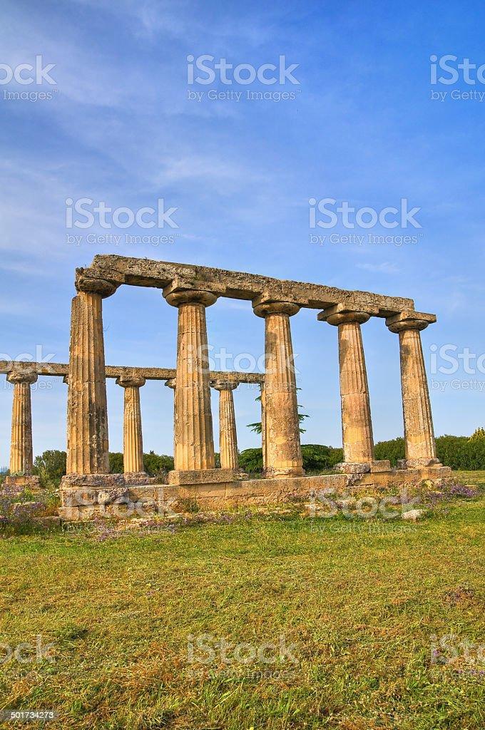 Tavole Palatine. Metaponto. Basilicata. Italy. royalty-free stock photo