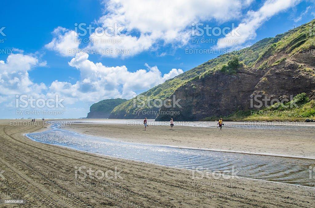 Te Henga (Bethells Beach) in New Zealand. stock photo