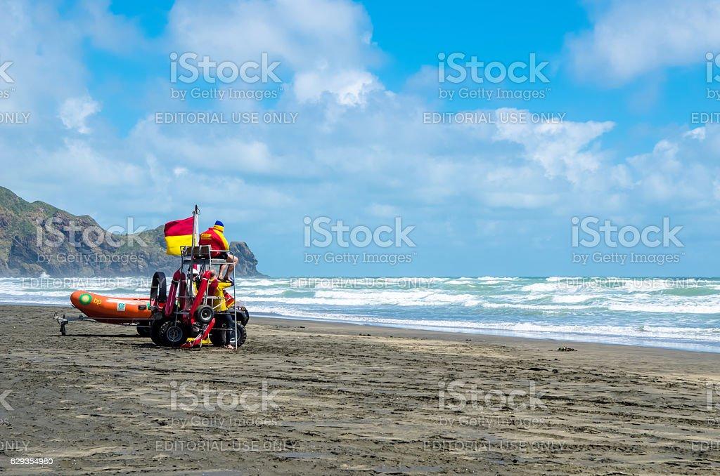 Te Henga (Bethells Beach) in the north island, New Zealand. stock photo