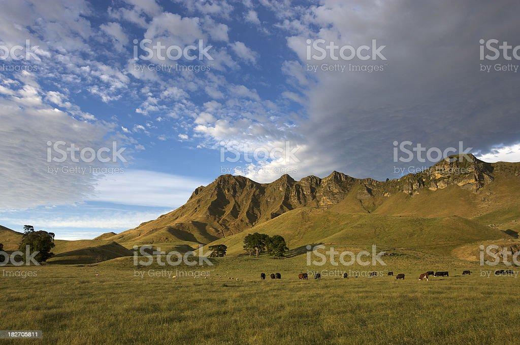 Te Mata Peak, Hawkes Bay, New Zealand stock photo