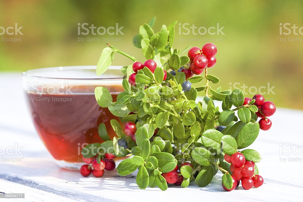 Tea and beries. Focus on berry royalty-free stock photo