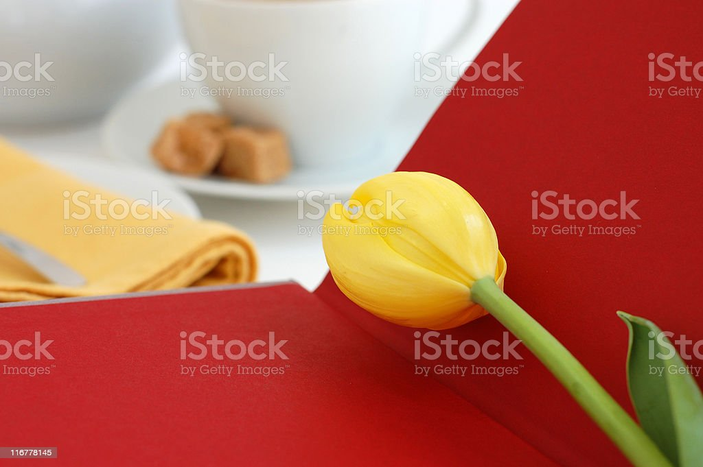 Tea and Book royalty-free stock photo
