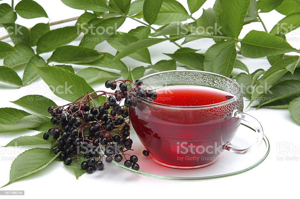 tea elder stock photo