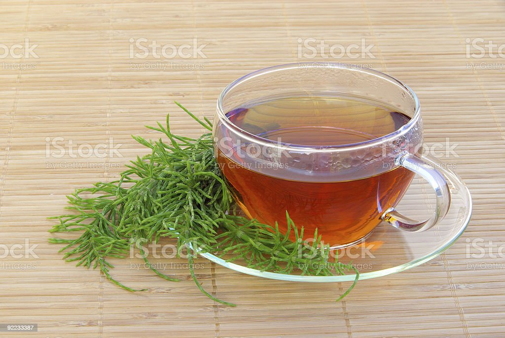 tea field horsetail royalty-free stock photo