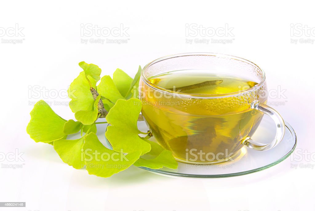 tea ginkgo stock photo