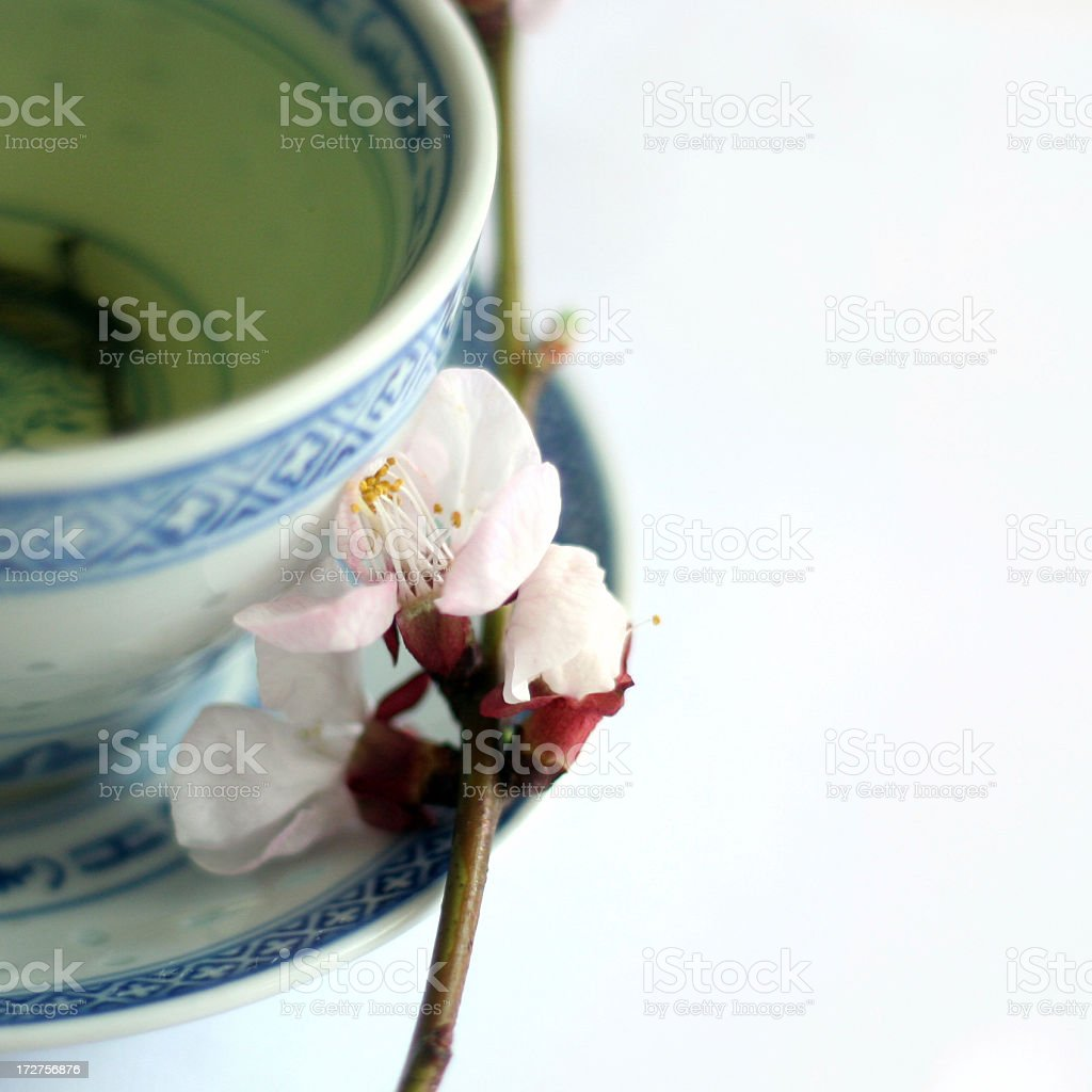 Tea in Spring royalty-free stock photo