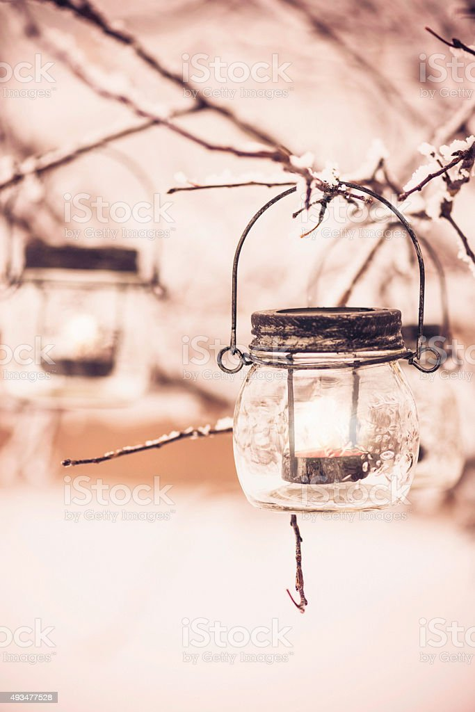Tea light lanterns with candles hanging on winter tree branches stock photo