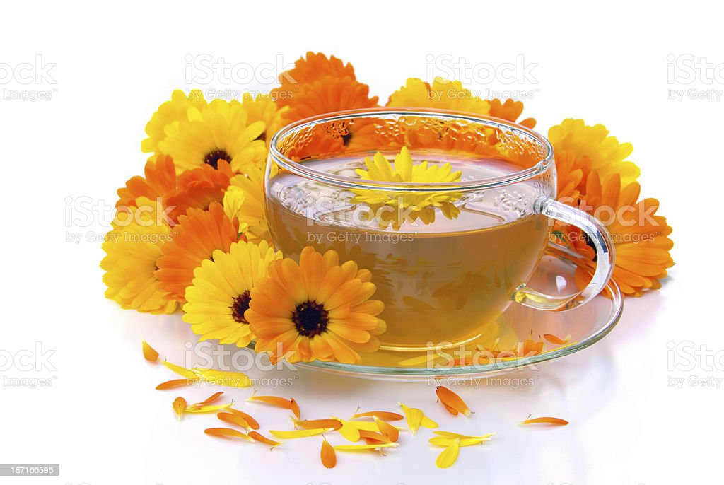 tea marigold stock photo