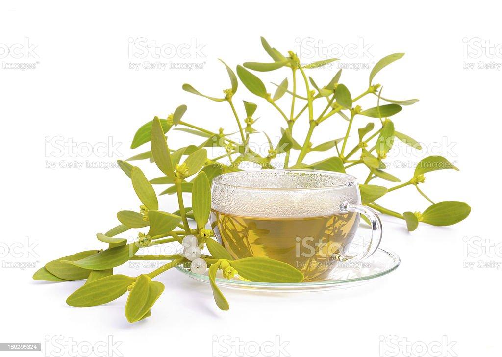 tea mistletoe stock photo