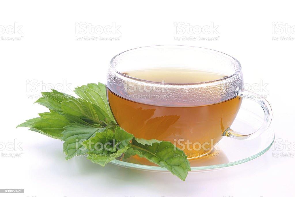 tea Peppermint stock photo