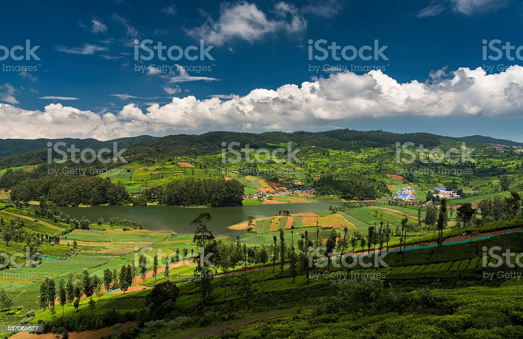 Tea plantations around the Emerald Lake in Ooty stock photo