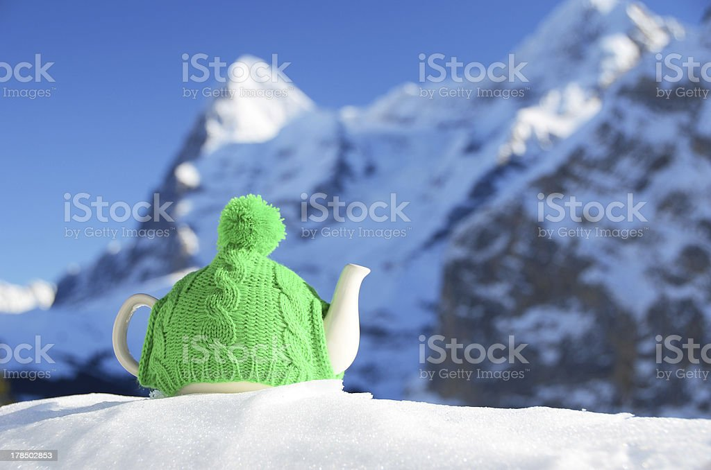 Tea pot in the knitted cap royalty-free stock photo
