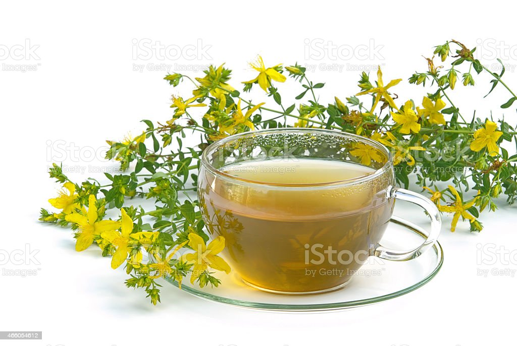 tea St Johns wort stock photo