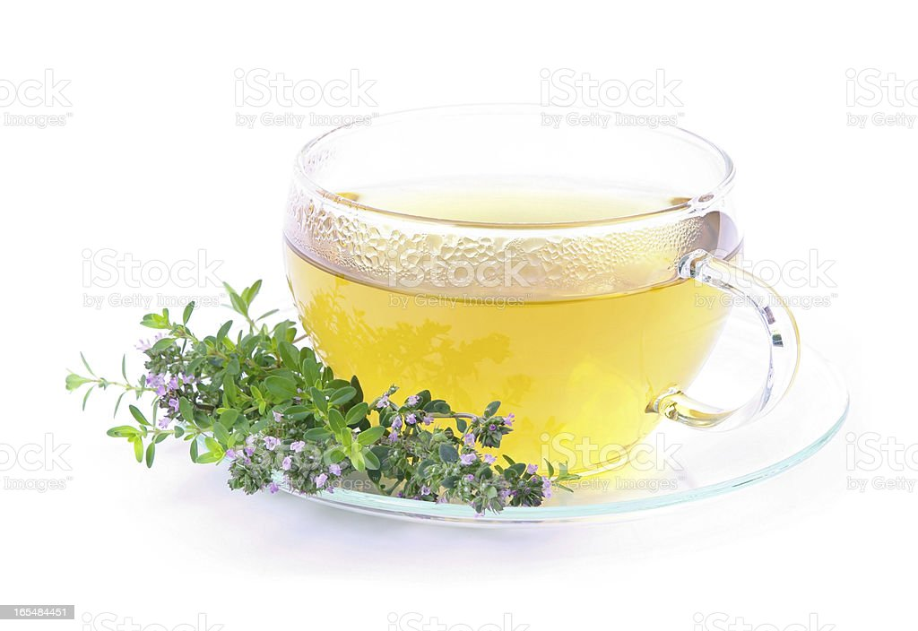 tea thymus stock photo