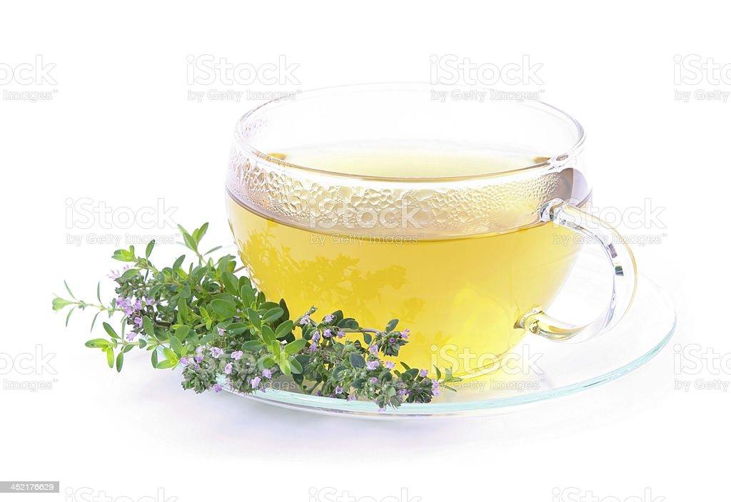 tea thymus stock photo