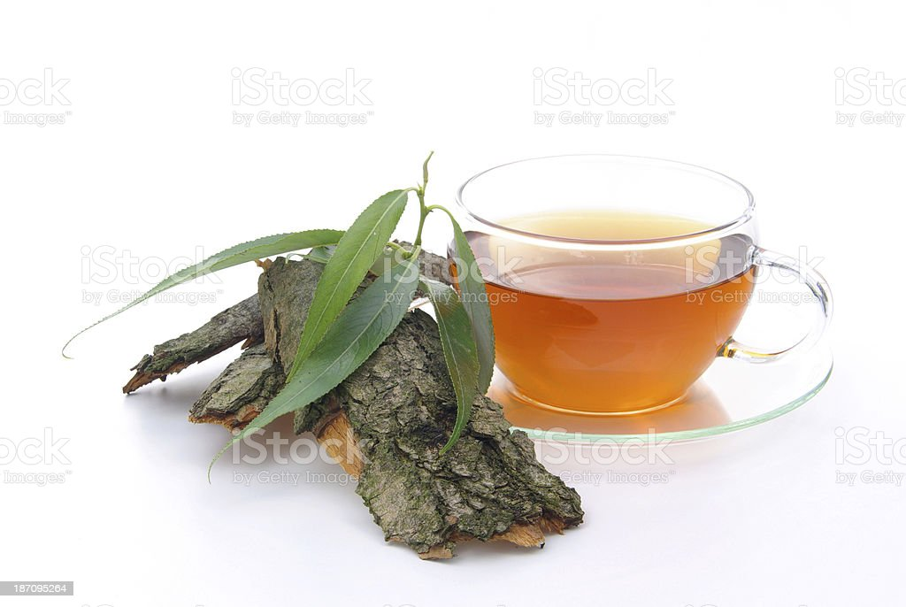 tea willow stock photo