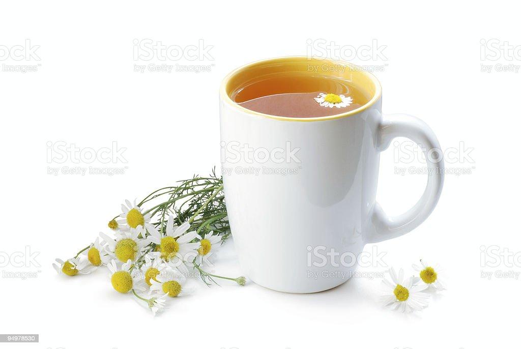 tea with chamomile stock photo