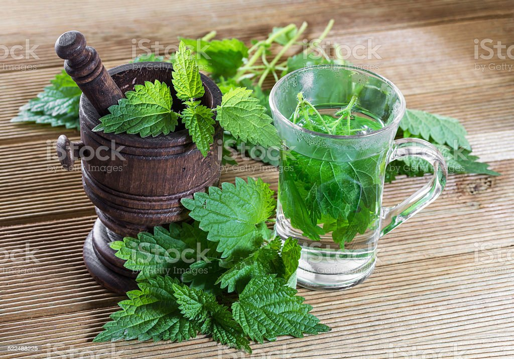 Tea with fresh nettles on a wooden background stock photo