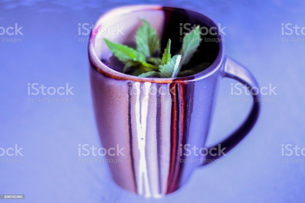 Tea with Mint and Lavender stock photo