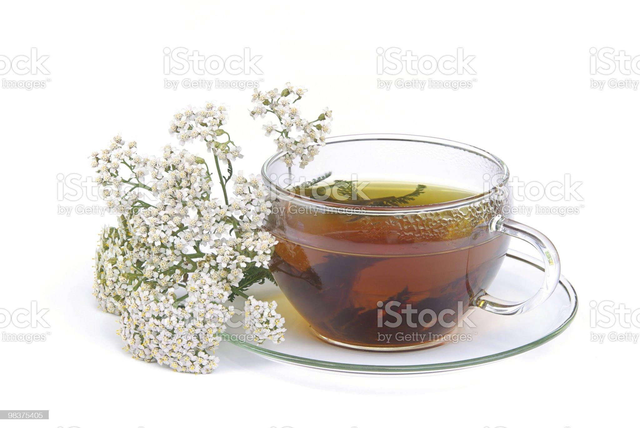 tea yarrow royalty-free stock photo