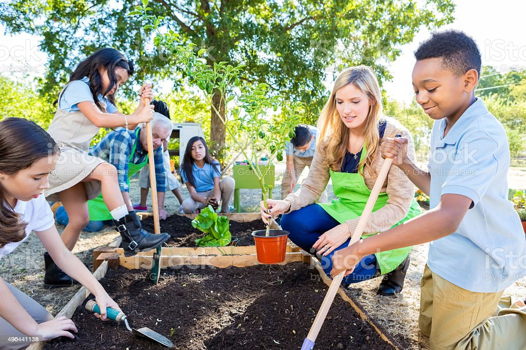 Teacher and students gardening during farm field trip stock photo
