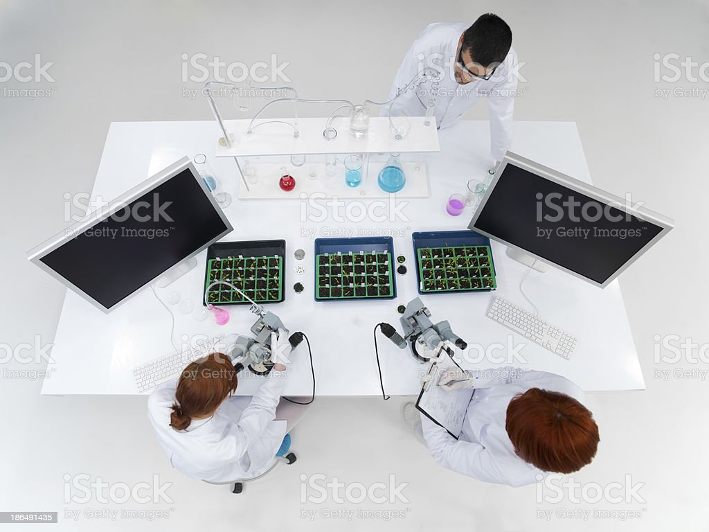 teacher and students in a laboratory royalty-free stock photo