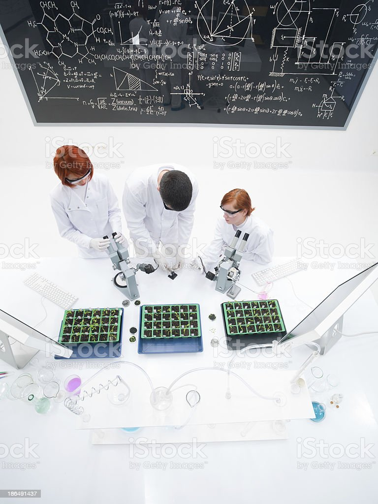teacher and students in laboratory royalty-free stock photo